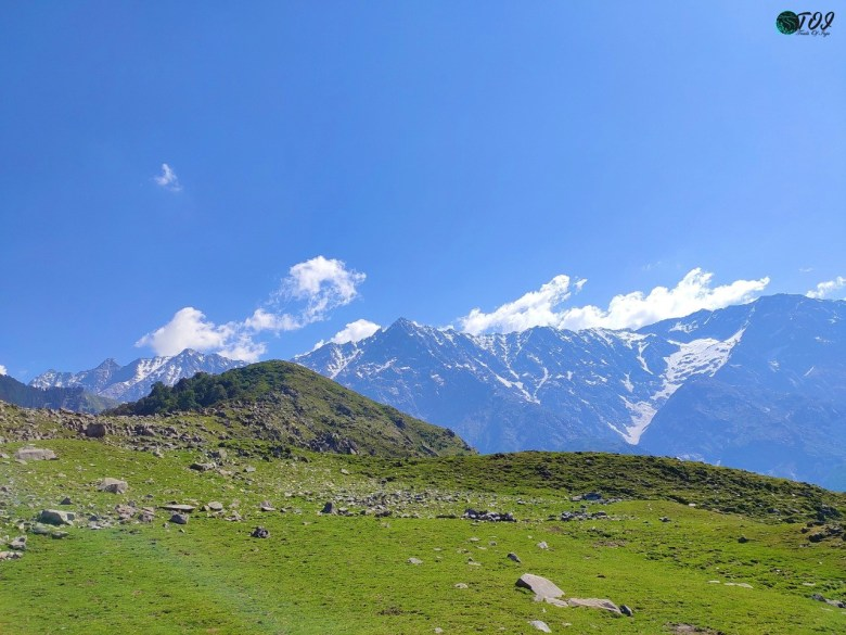 Meadows And Massifs Of Triund