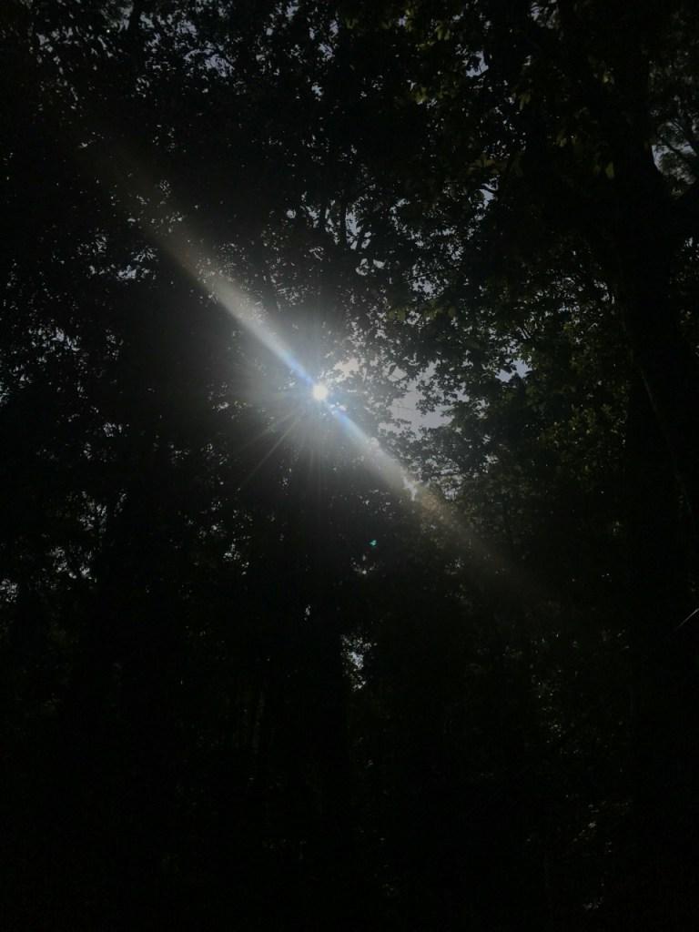 Peeping Sun At Abbey Falls Madikeri Coorg