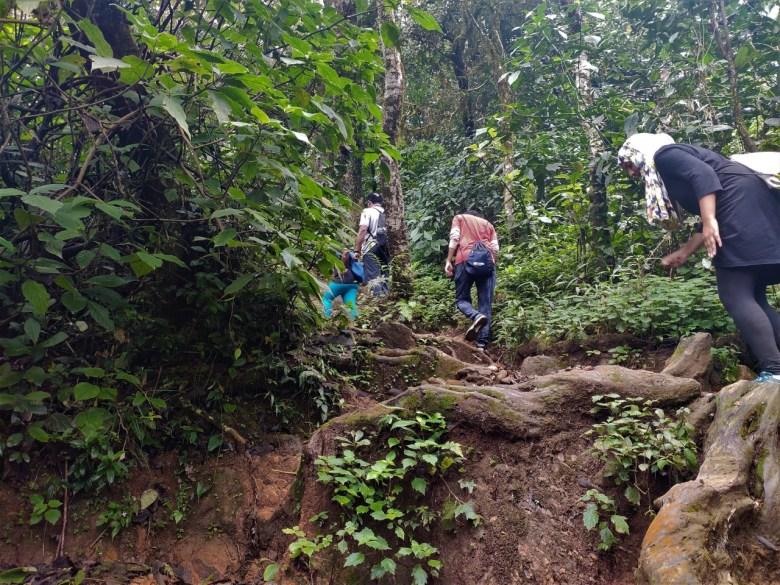 Steep Climb On Tadiandamol Trek