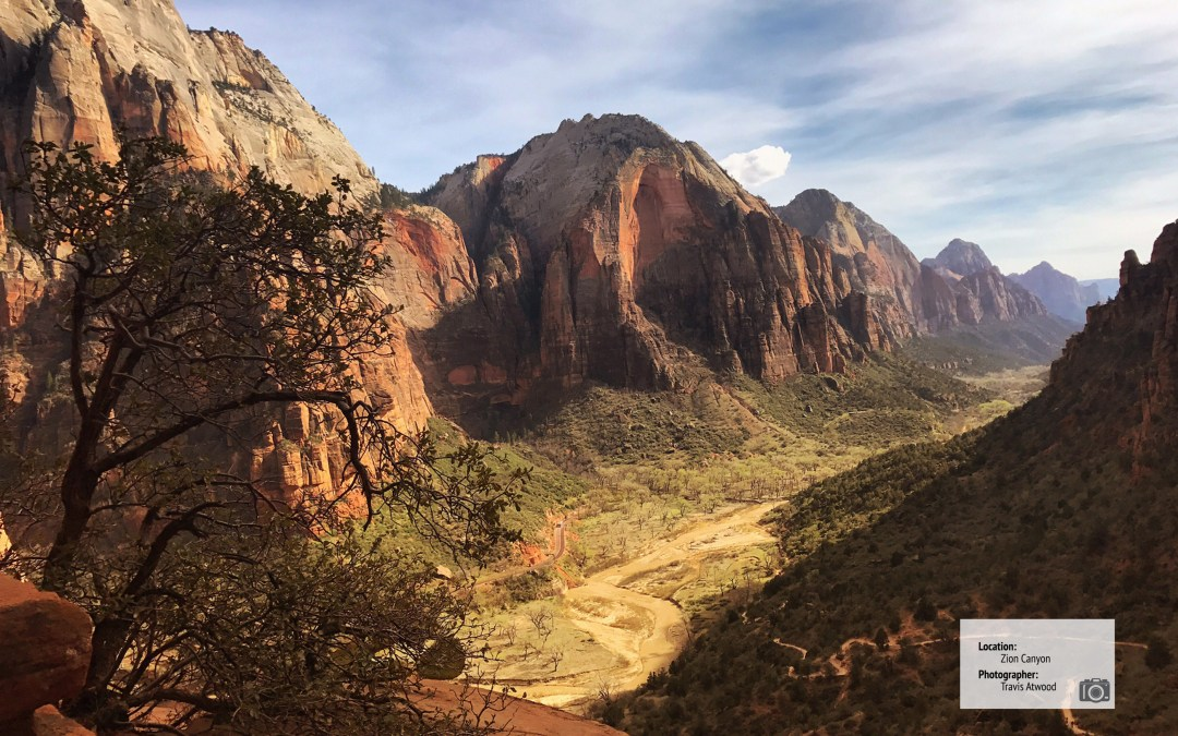 Featured Trail: Angel's Landing
