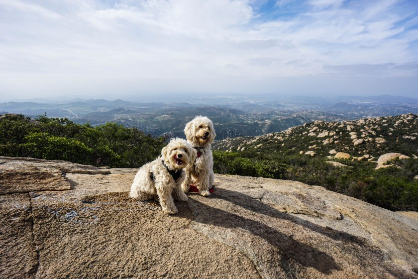 Isla and Lilly