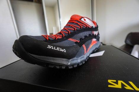 Salewa Speed Ascent