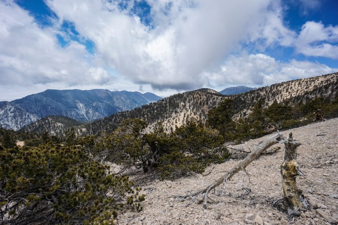 San Gorgonio via Vivian Creek