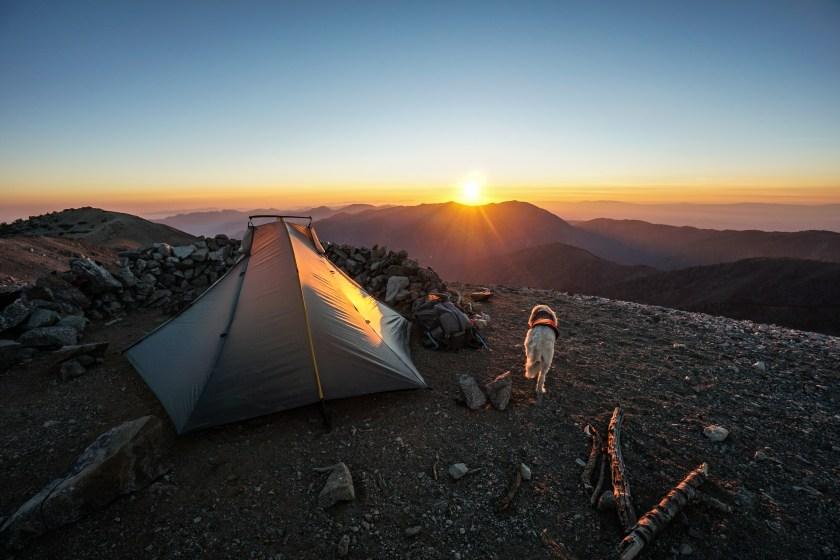Mt. Baldy Summit Camping