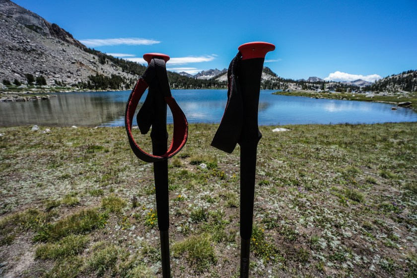 Black Diamond Trail Pro Trekking Poles
