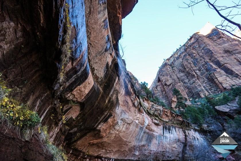 Zion National Park Emerald Pools Springdale