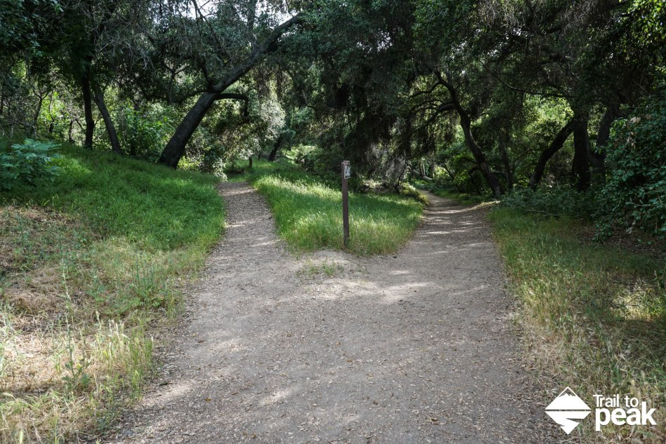 Hiking The Michael D Antonovich Trail