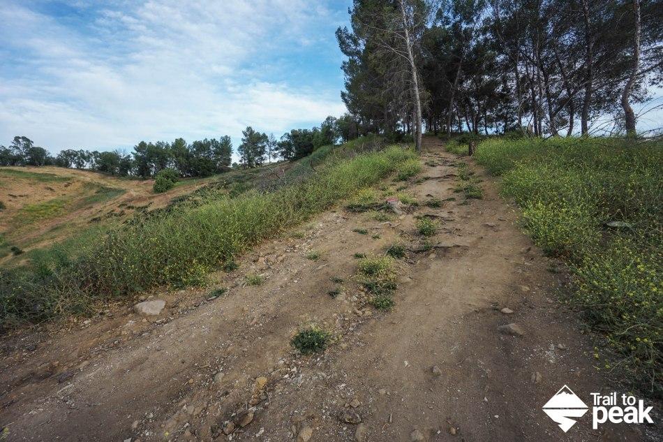 Hiking The Bonelli Park Loop Trail