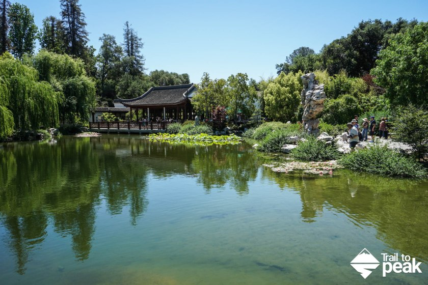 The Huntington Botanical Gardens Chinese Gardens