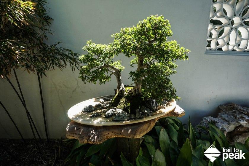 The Huntington Japanese Gardens