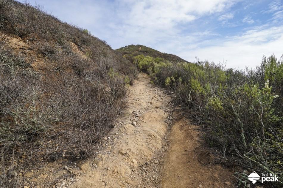Hiking Cerro San Luis From The Lemon Grove Loop Trailhead
