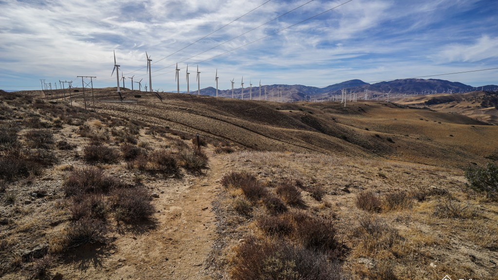 Dog Friendly Hikes Nevada County