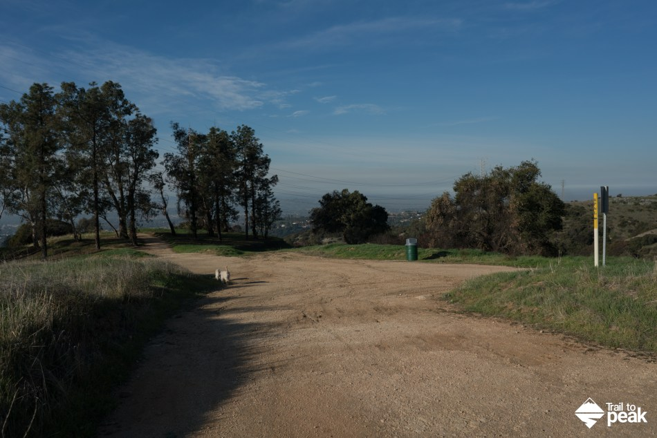 Hiking The Johnson's Pasture Gale Mountain Claremont Wilderness Park