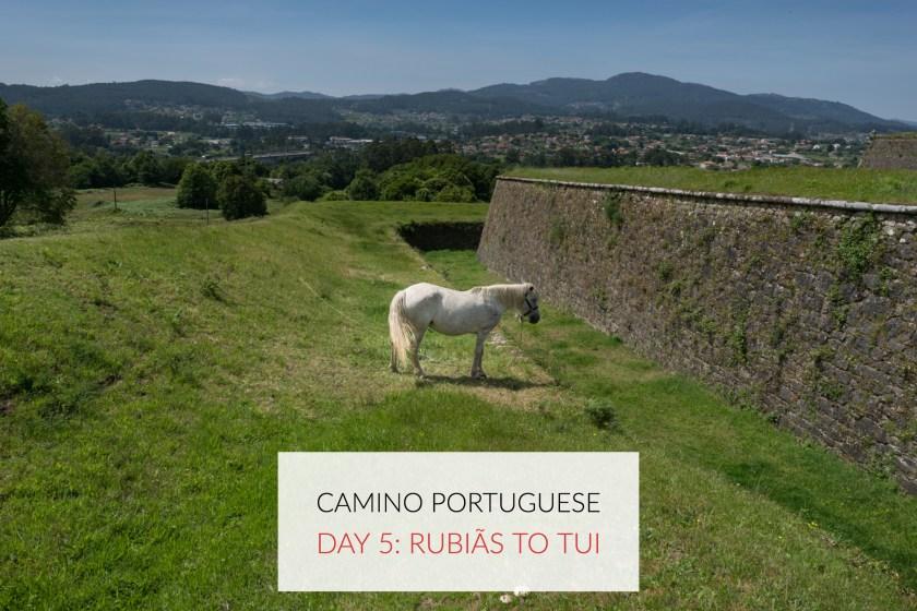 Camino Porto (7)
