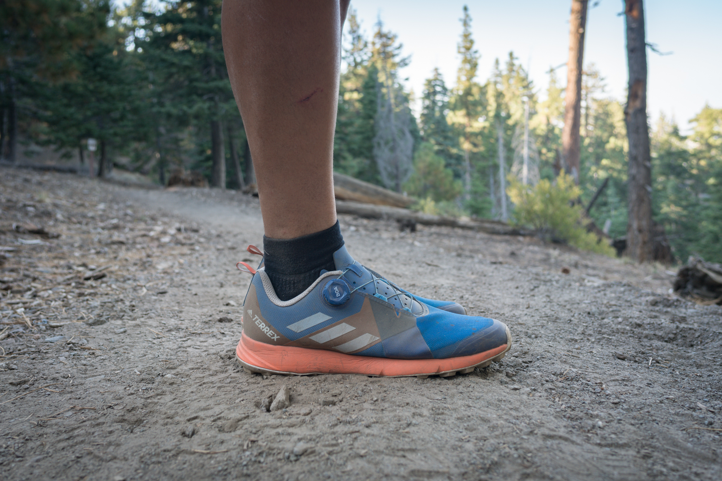 Gear Review: Adidas Terrex Two Boa Trail Shoe Trail to Peak