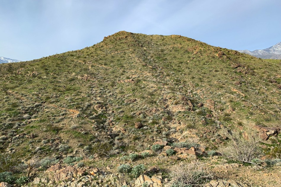 Hiking Araby Trail To Berns Trail Lookout - Palm Springs, CA