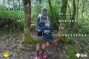 The Camino Portuguese (Pt. 3): Rubiaes to Pontevedra