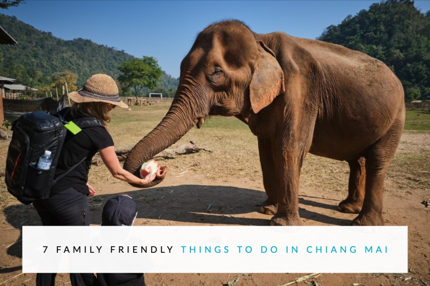 7 Family Friendly Things To Do In Chiang Mai