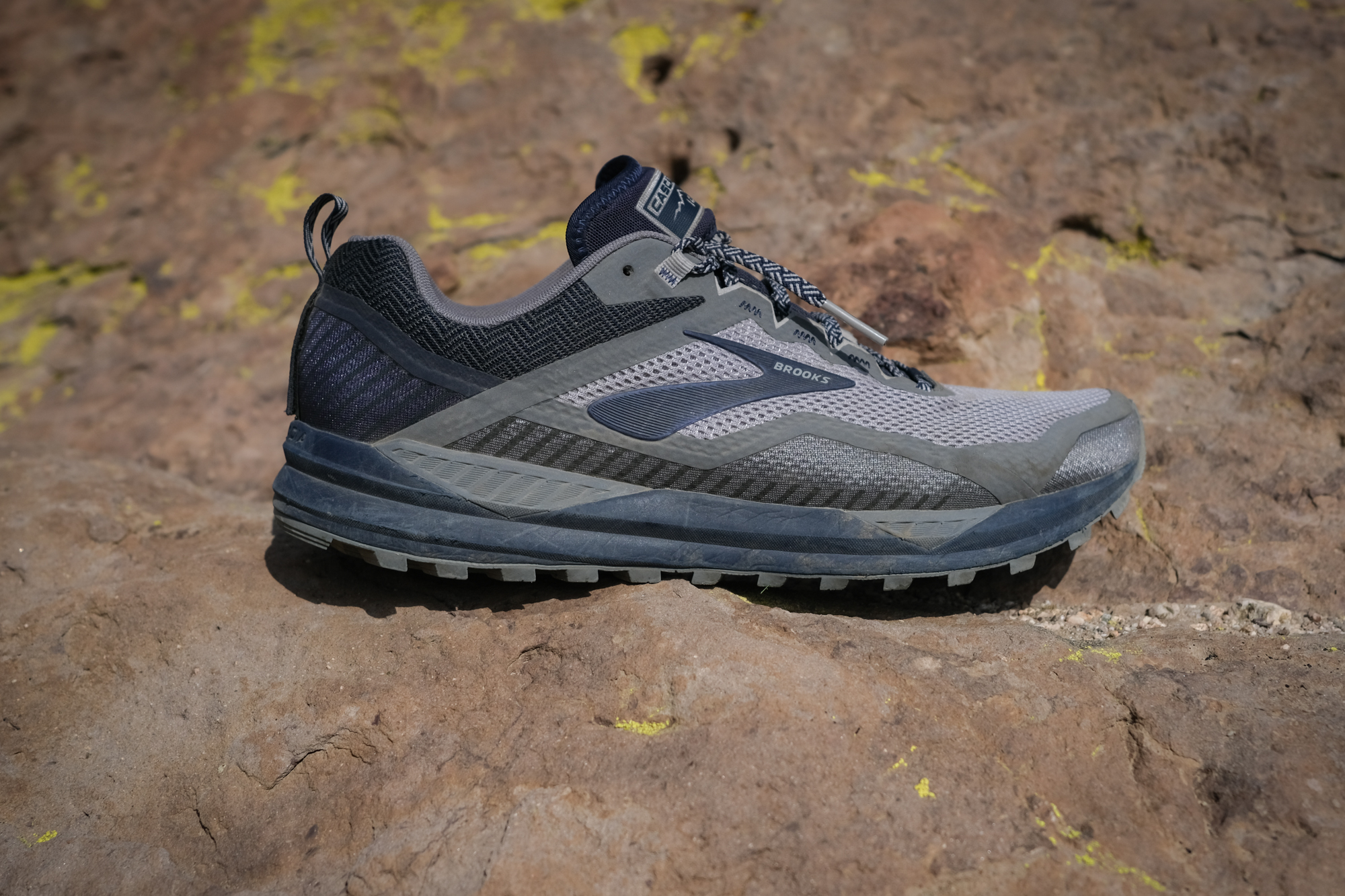Gear Review: Brooks Cascadia 14