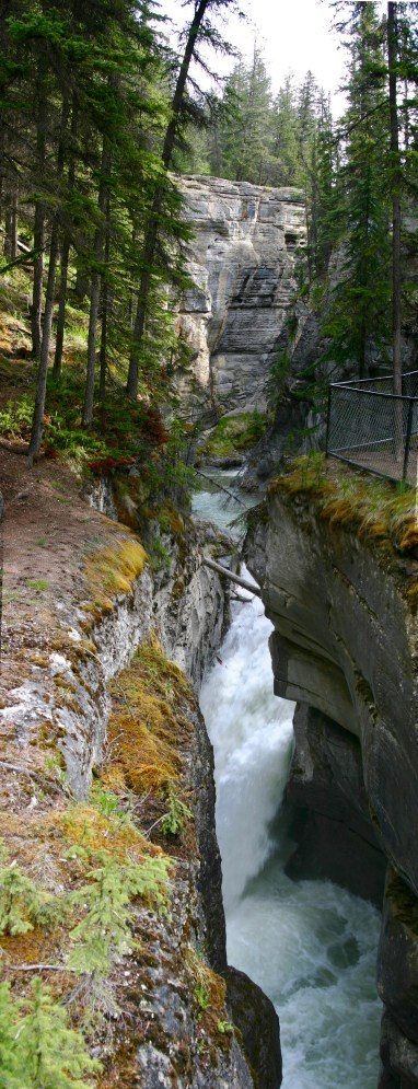 Maligne Canyon in the spring is full of rushing water.