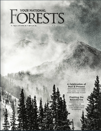 your national forests
