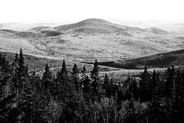 moosilauke view