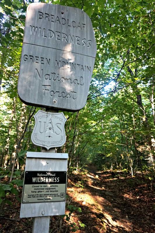 2-wilderness