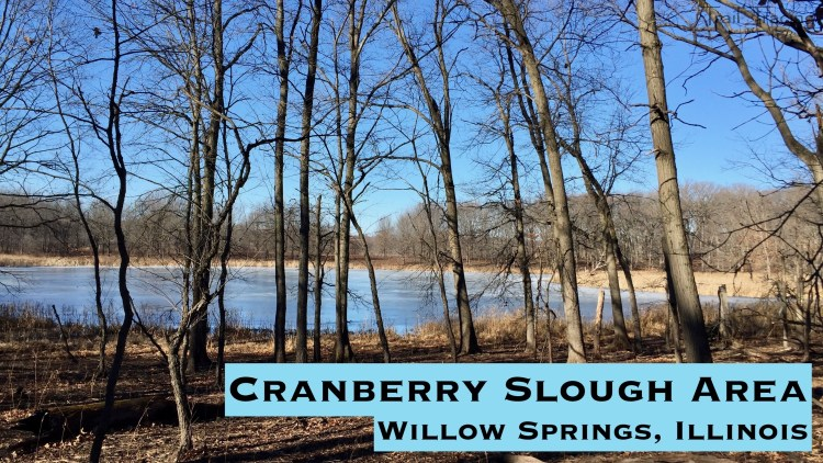 Cranberry Slough