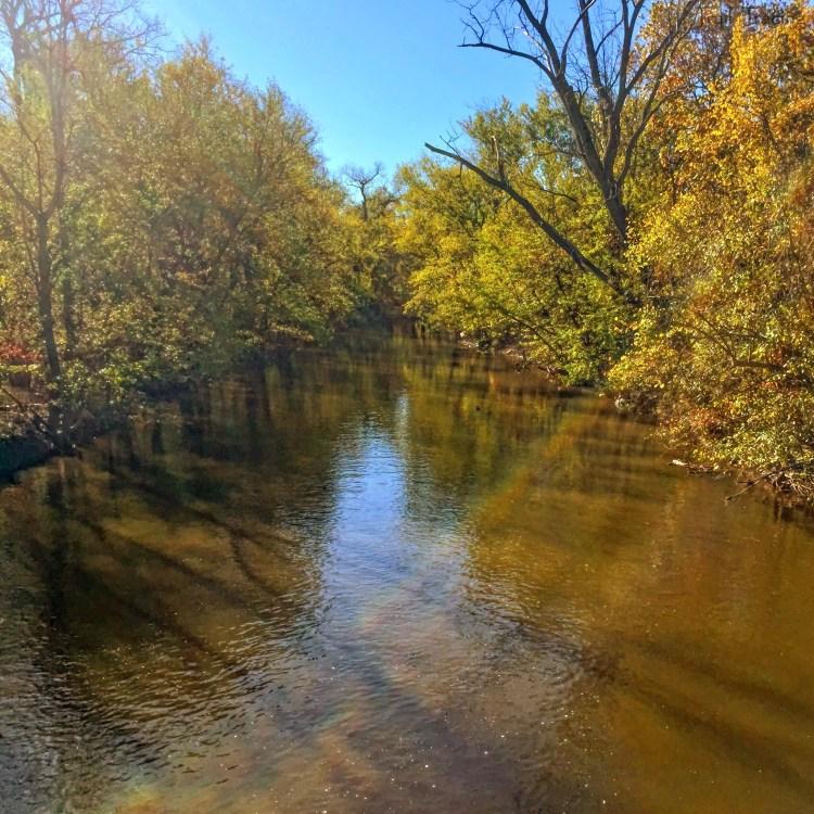 North Branch - Linne Woods