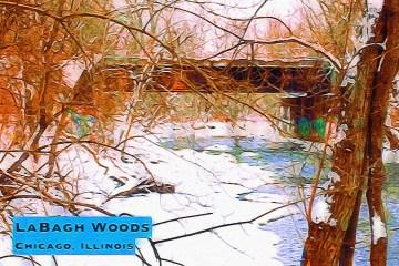 LaBagh Woods Thumbnail