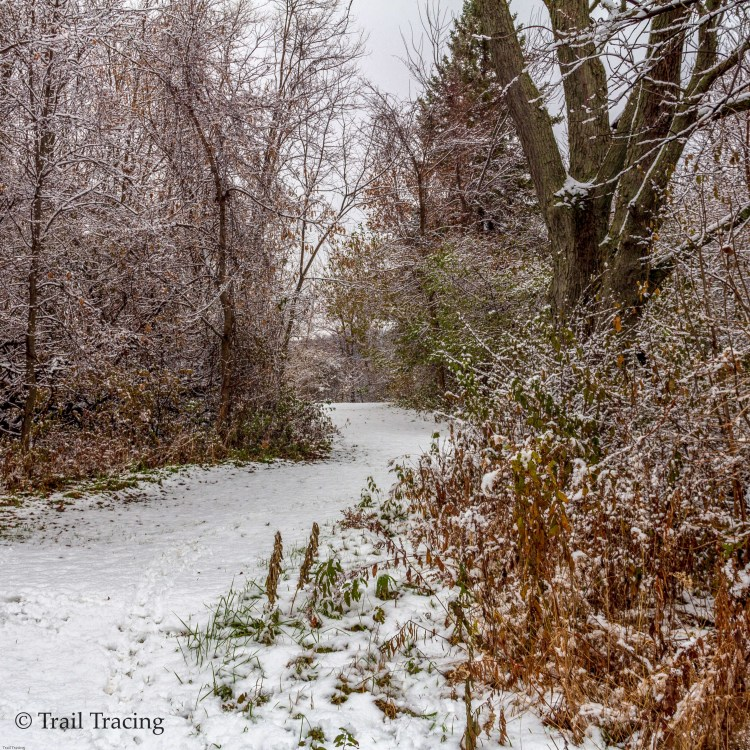waukegan_savanna_trail_1