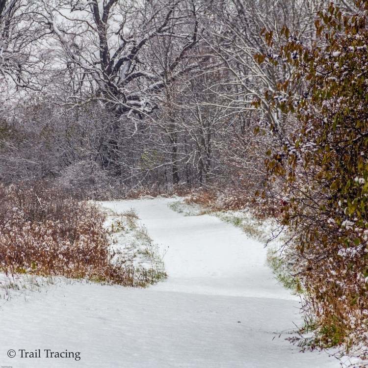 waukegan_savanna_trail_2
