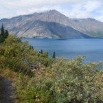 Cottonwood Trail, Kluane National Park, Yukon