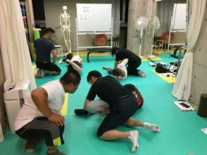 解剖,姿勢改善,パーソナルトレーナー,フィットネス指導者