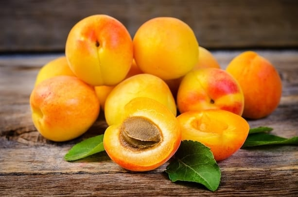 apricot superfood