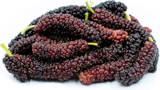 mulberries superfoods