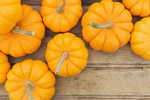 pumpkin superfood