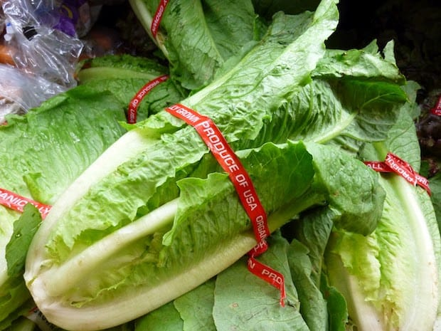 romaine lettuce superfood