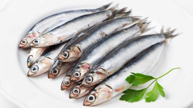 sardines superfood