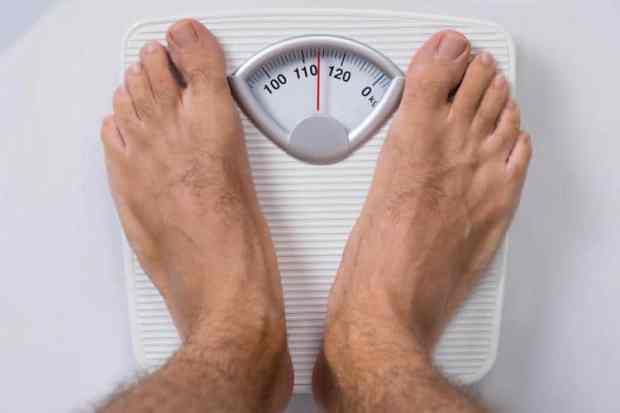 best probiotic for mens weight loss