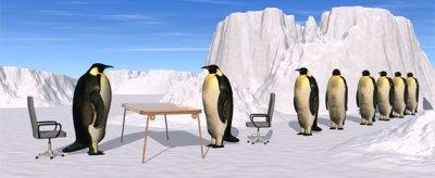 A queue of penguins