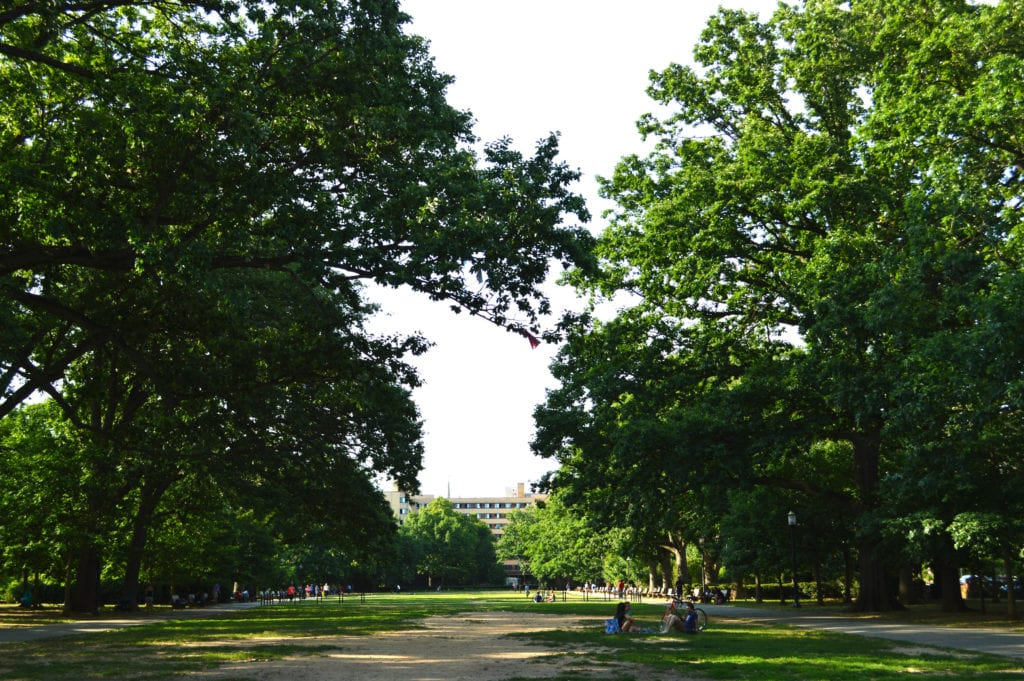 Meridian Hill Park has a large picnic area