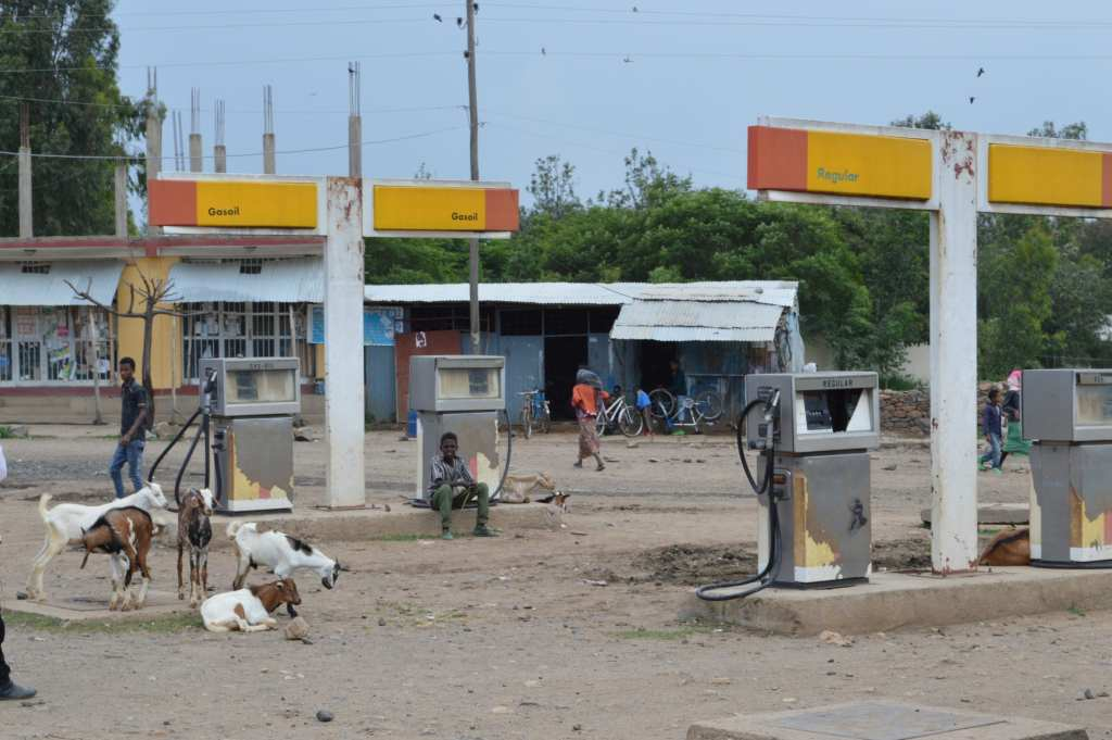 Axum street life: goats at a filling station