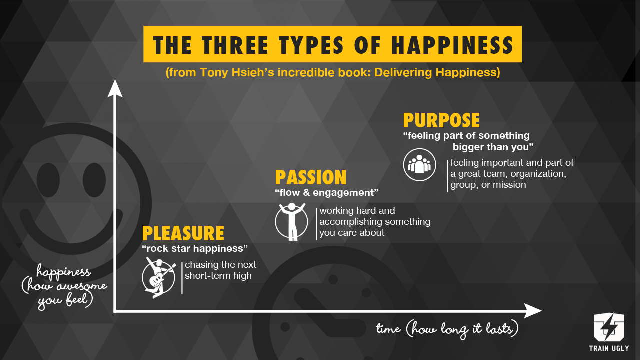 the three types of happiness train ugly three types of happiness
