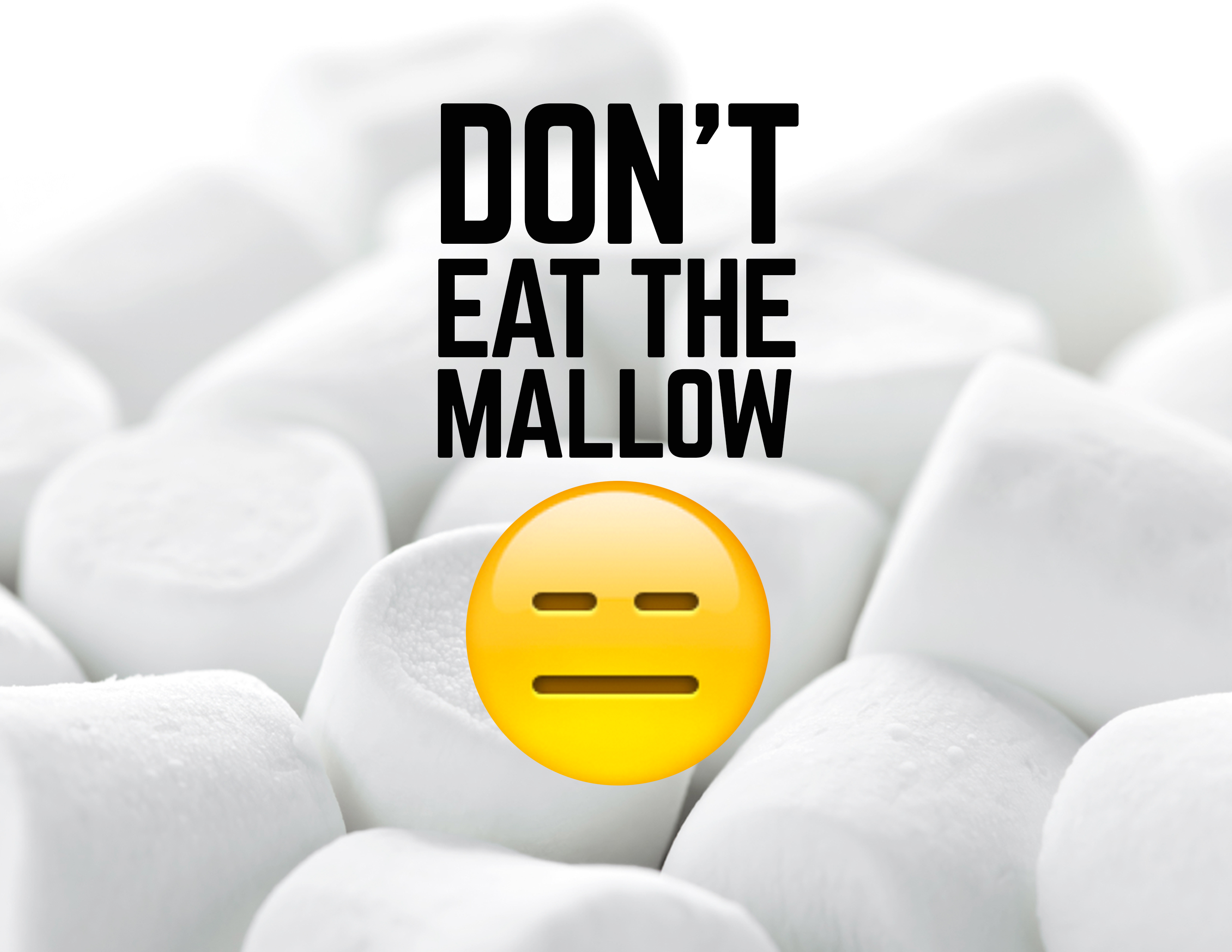 mallow poster