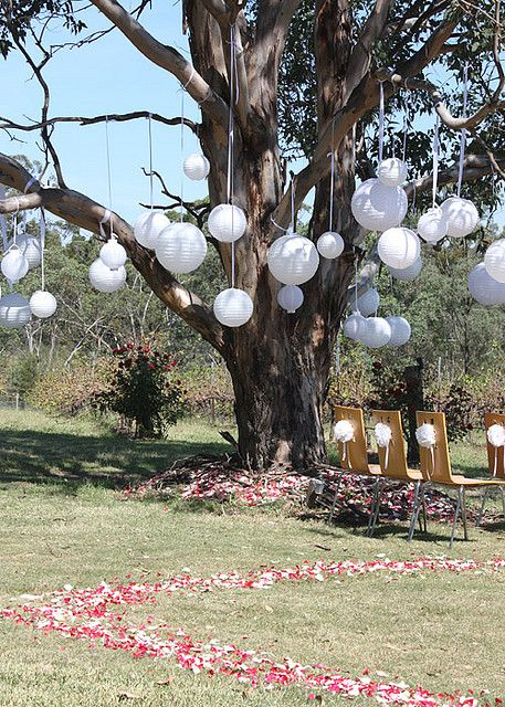 cérémonie laïque champêtre