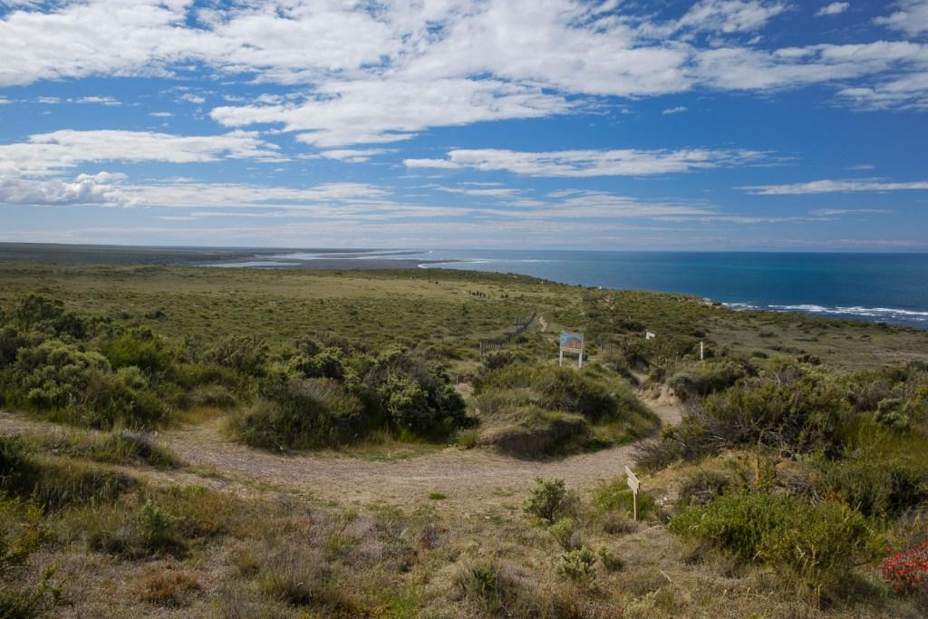 peninsule valdes proche puerto madryn patagonie paysage argentine