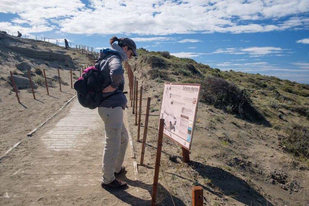 cindy explore peninsule valdes patagonie argentine