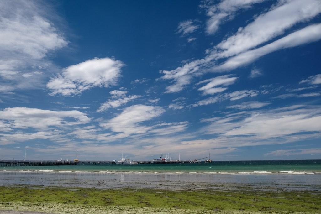 océan puerto madryn algue patagonie argentine