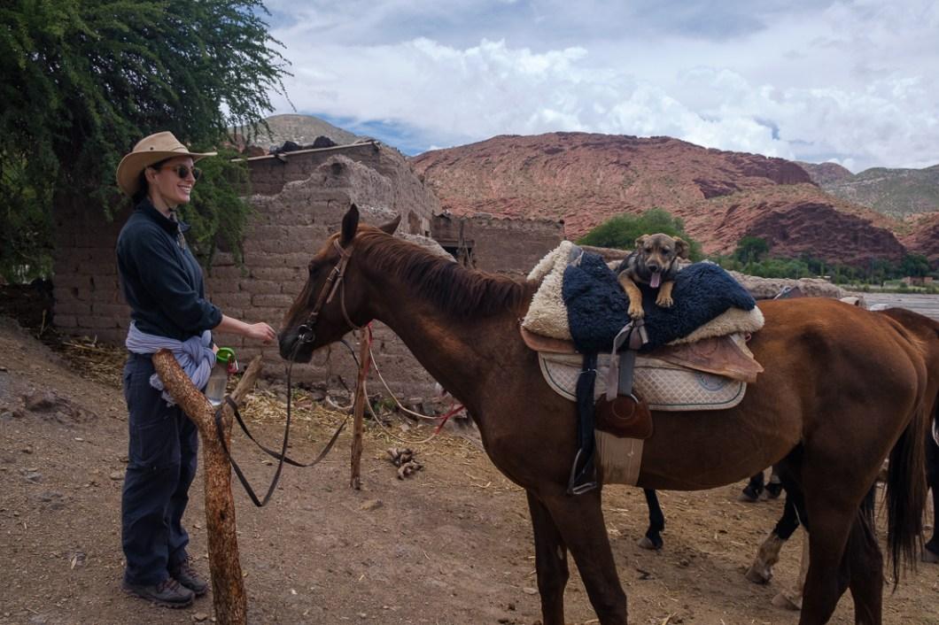 ballade cheval tupiza bolivie